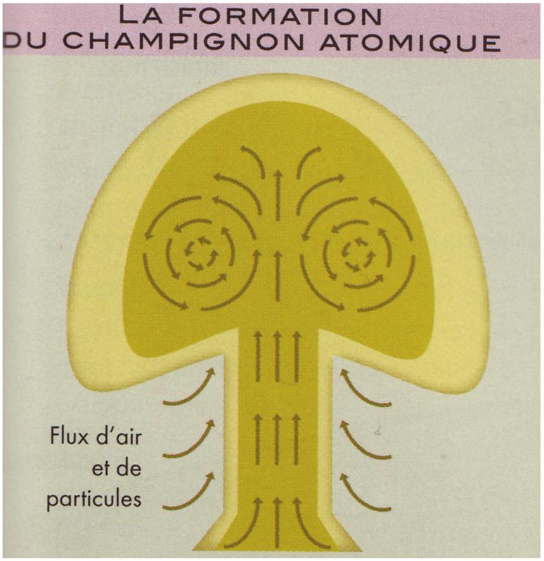 champignon-atomique.jpg
